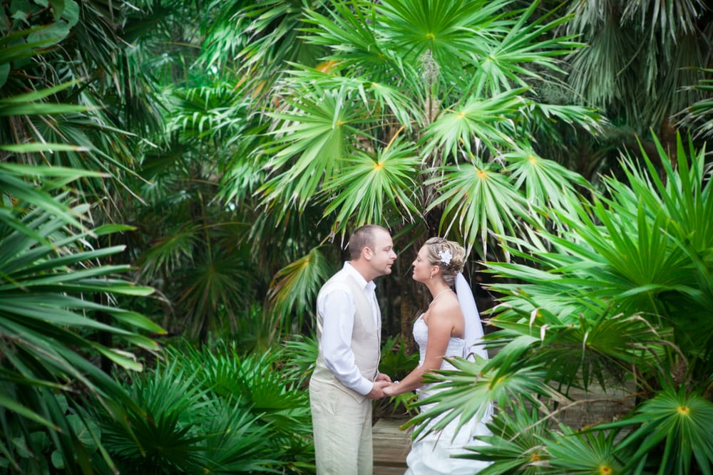 Tropical-Trees-Couple-Wedding-Zsuzsi-Pal-Photography