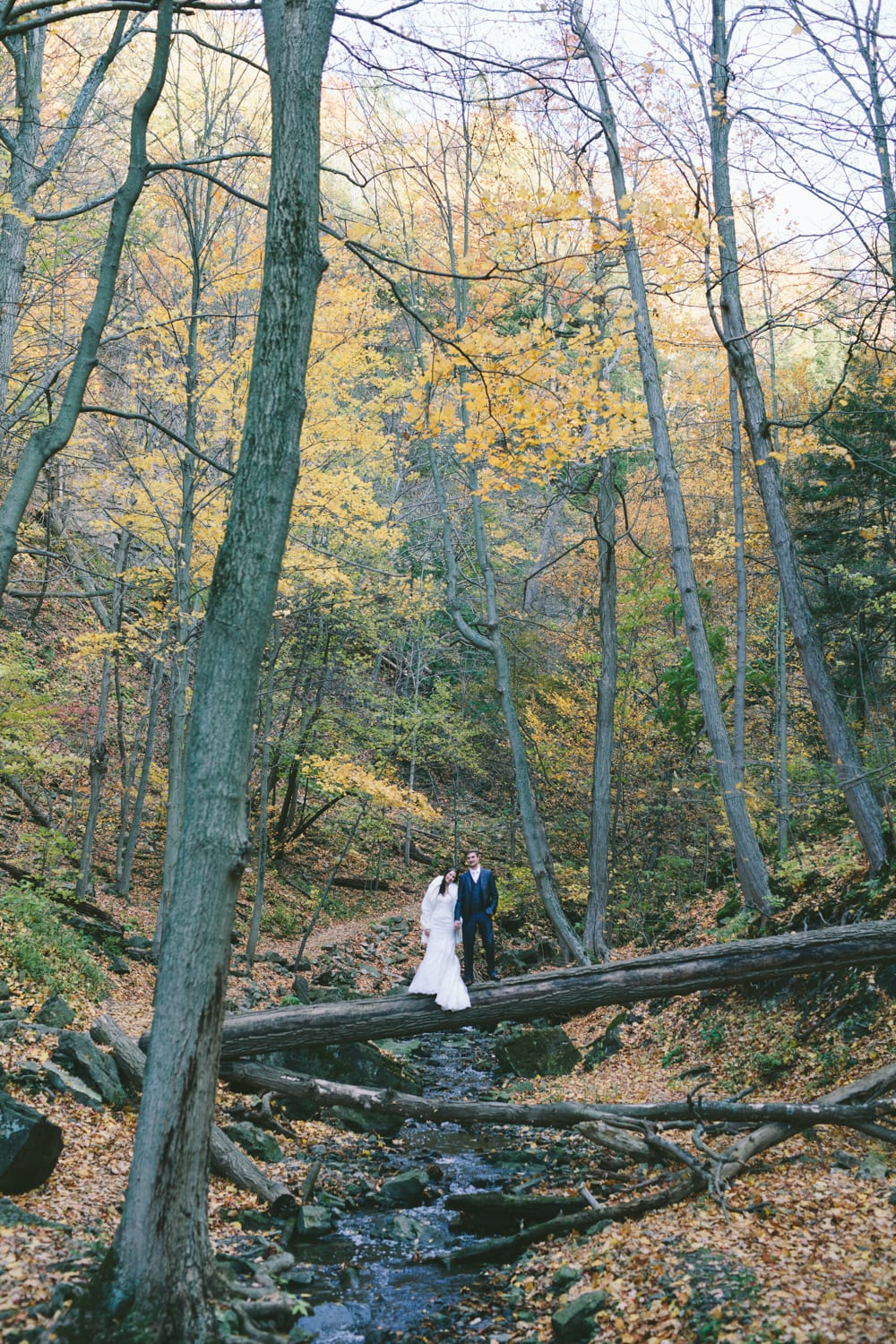 Fallen-Log-Forest-Zsuzsi-Pal-Photography-Wedding