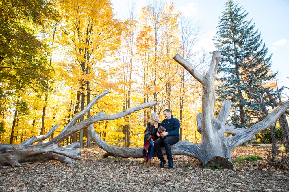 Engagement-Zsuzsi-Pal-Photography-Toronto-Botanical-Garedens-Fall