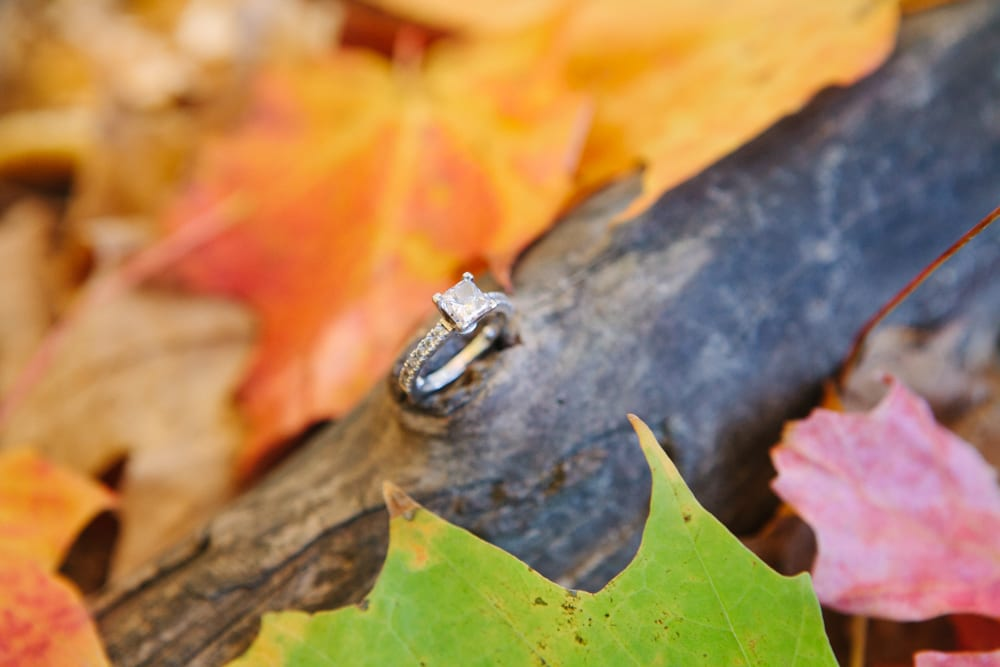 Fall-Ring-Engagement-Zsuzsi-Pal-Photography