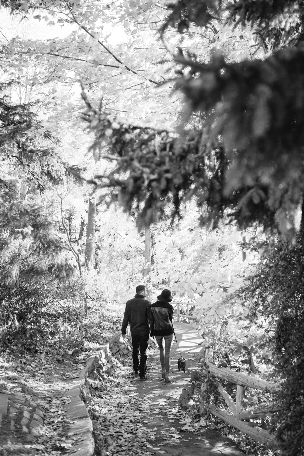 Forest-Walk-Engagement-Zsuzsi-Pal-Photography