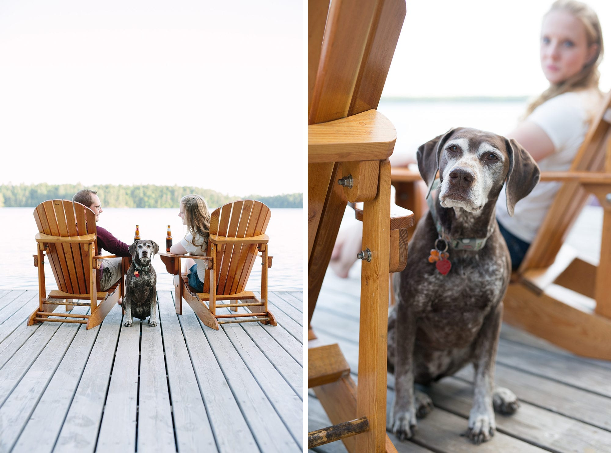 Muskoka Chairs Dog Engagement Zsuzsi Pal Photography