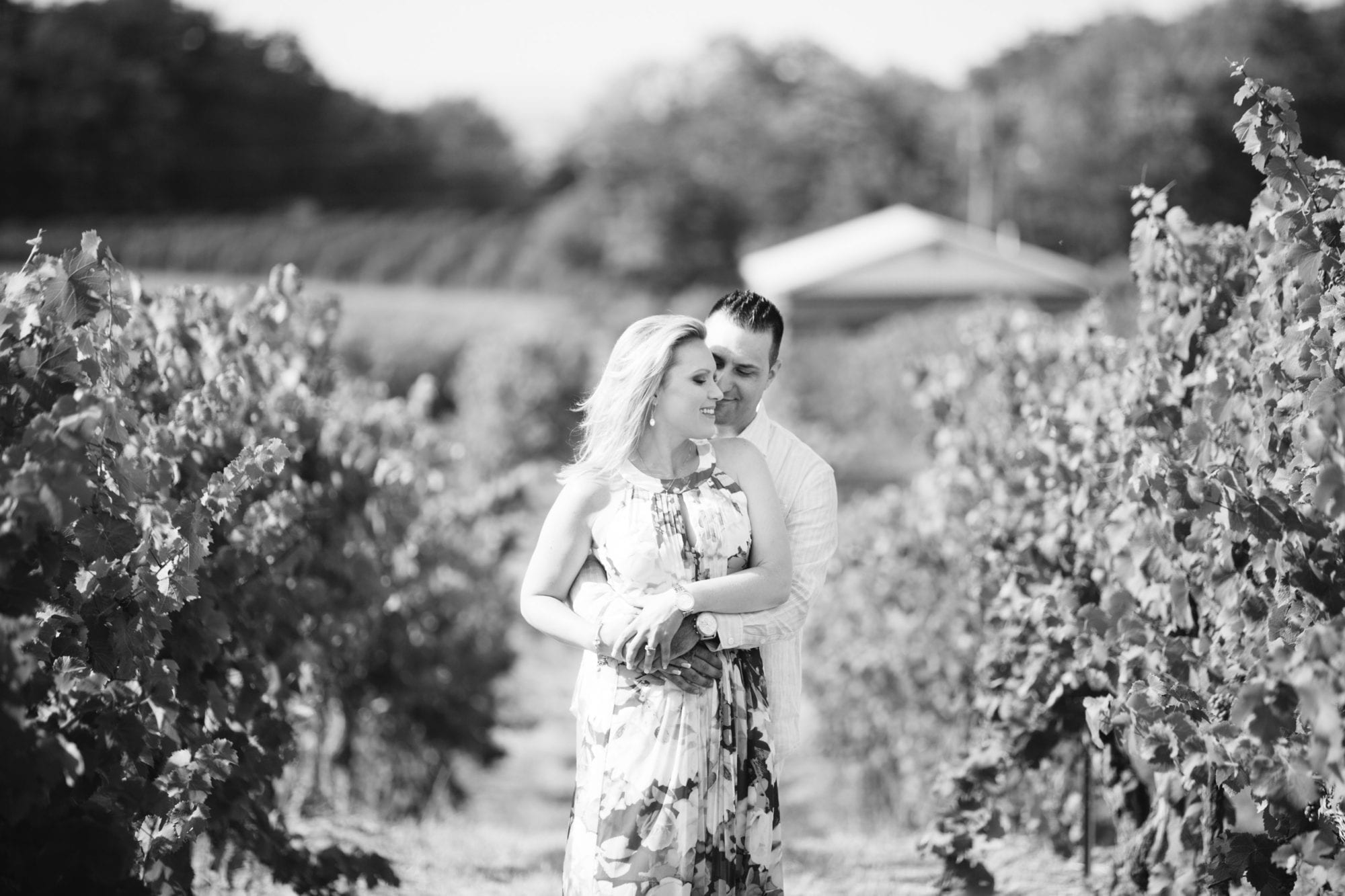 Tawse Winery Engagement Zsuzsi Pal Photography Couple