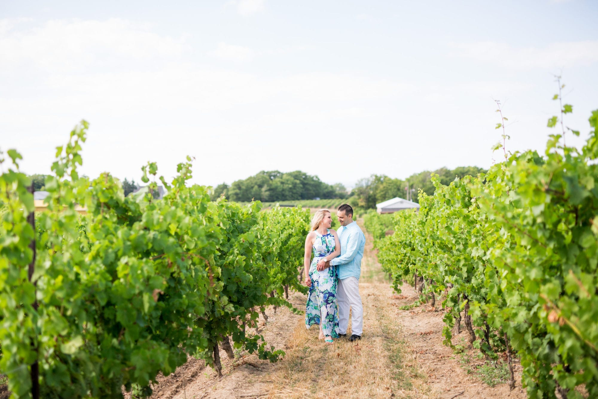 Tawse Winery Engagement Zsuzsi Pal Photography
