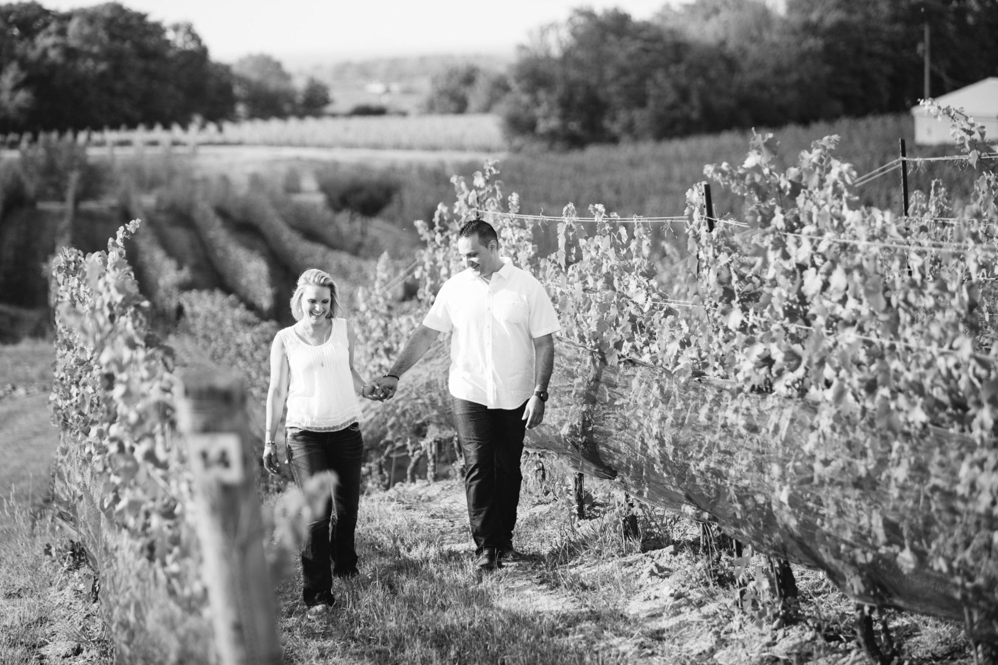 Black and White Tawse Winery Engagement Zsuzsi Pal Photography