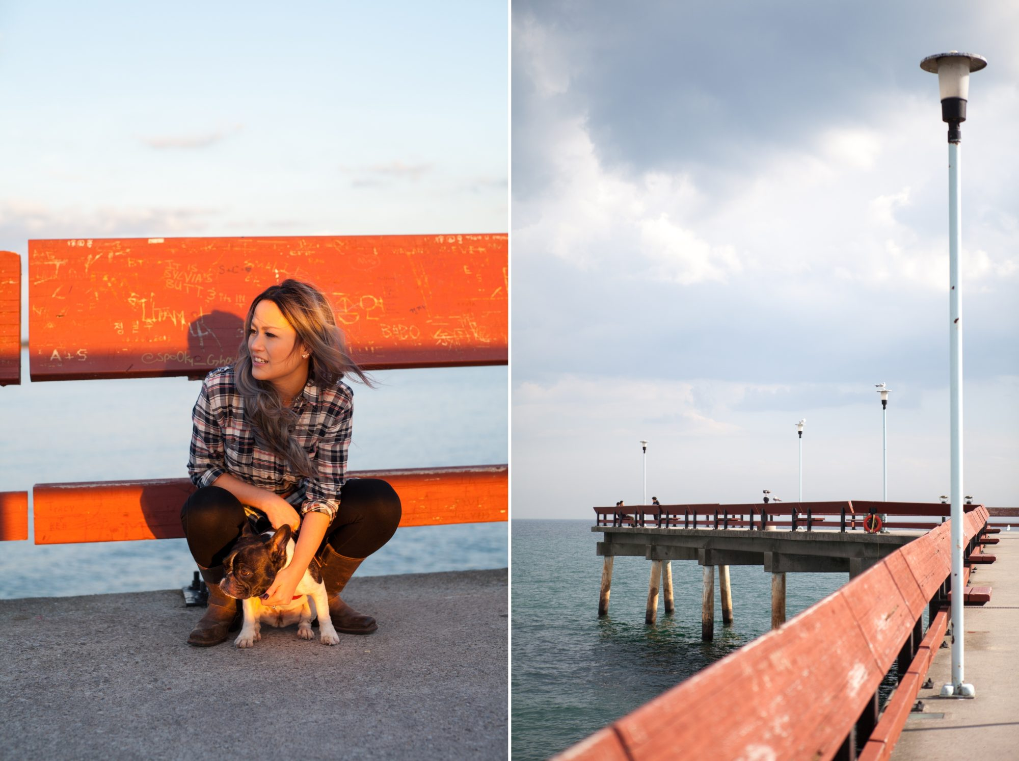 Golden Hour Puppy Toronto Island Engagement Shoot Zsuzsi Pal Photography