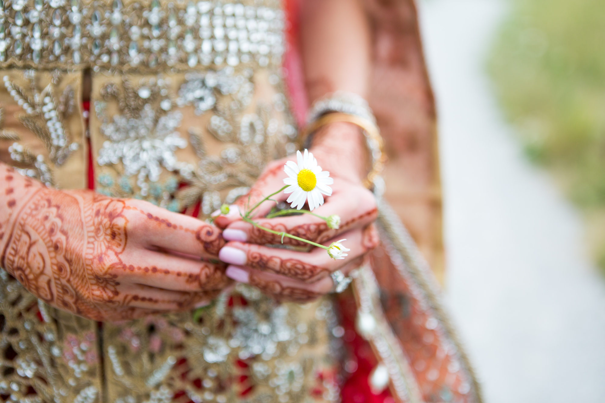 Daisy Desi Wedding Toronto Wedding Zsuzsi Pal Photography