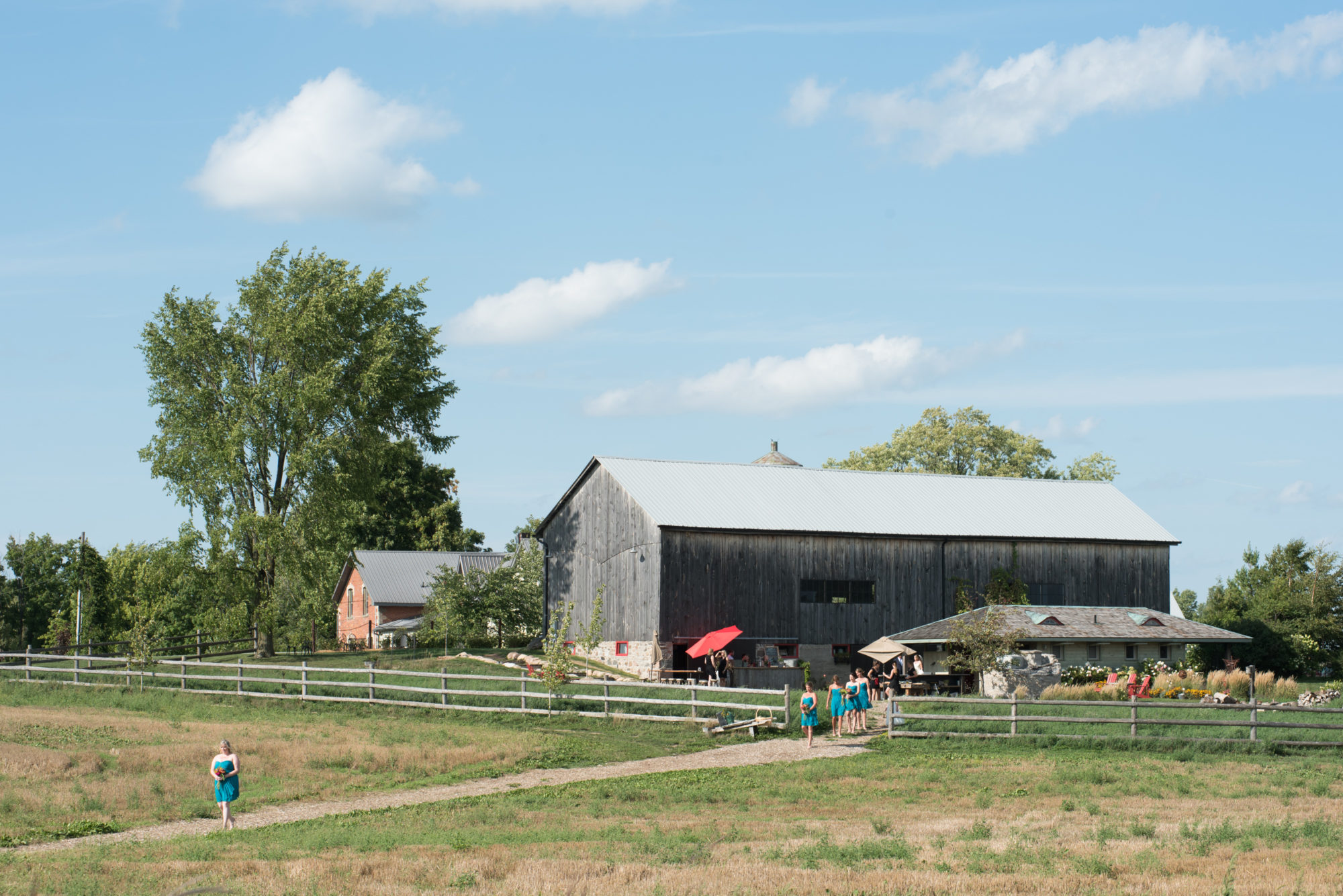 Ceremony Barns South Pond Farms Zsuzsi Pal Photography Wedding