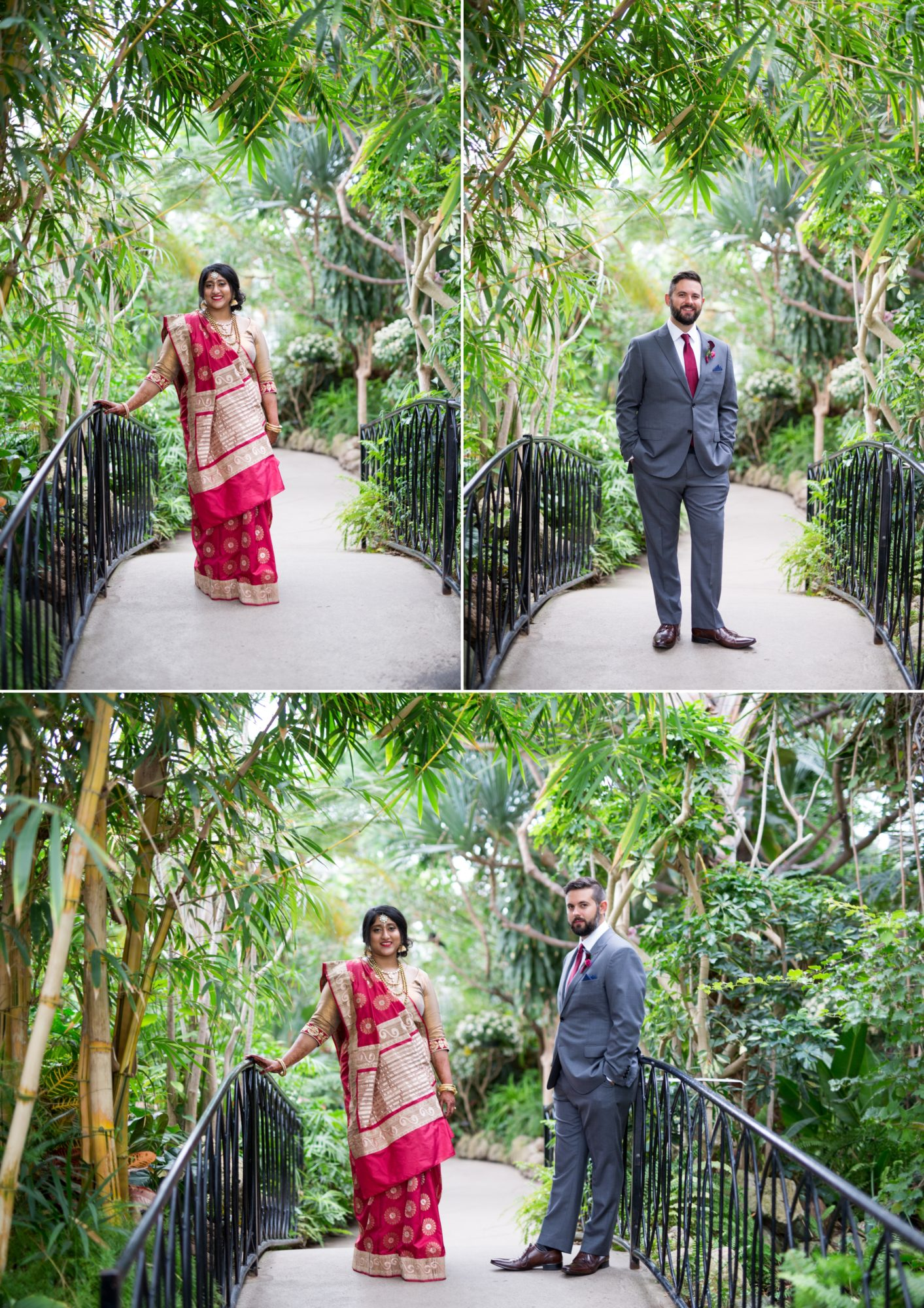 Centennial Greenhouse Indian Wedding Zsuzsi Pal Photography  Nature
